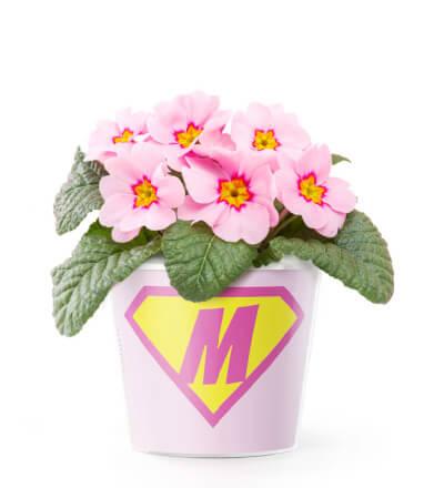 mothersday-440