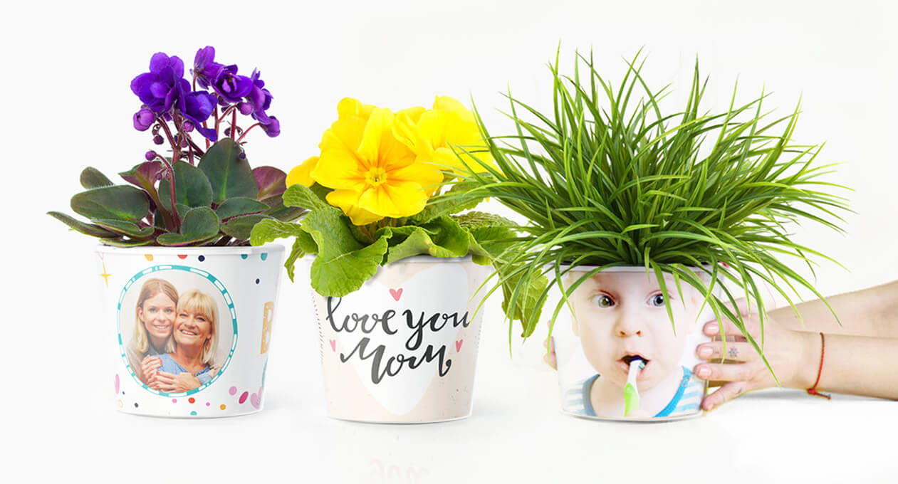 Flower pot  sc 1 th 165 & MyFacepot \u2013 Design your own flowerpot
