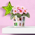 Teacher Graduation Gift – Flowerpot with 10 Photos