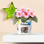 Thank You Idea for Teacher Flowerpot with 7 kid's photos